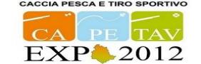 Campagna Advertising su portale tematico per Evento CA.PE.TAV