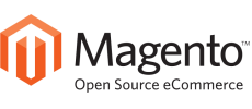 Progettazione e sviluppo sito web e-commerce con CMS Magento