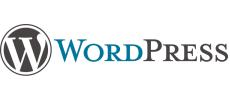 Progettazione e sviluppo sito web con CMS WordPress