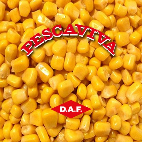 Portfolio Ingematic - D.A.F.al - Promotional Marketing per la linea Pescaviva 2010-2013