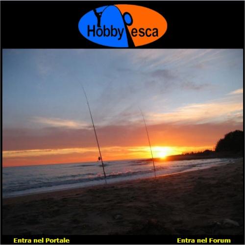 Portfolio Ingematic - Cliente Hobby Pesca - Portale Web di Informazione e Servizi dedicato alla Pesca Sportiva in Mare e Acque Interne