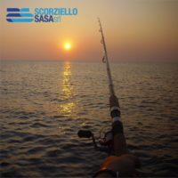 Portfolio Ingematic - Sasa Fishing - Promotional Marketing distributore brand pesca sportiva 2009